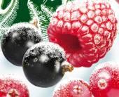 «Зимние ягоды» встречают весну
