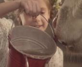 Природная польза молока