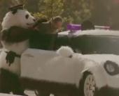 Панда наказывает поганцев