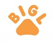 Запуск BIGL.UA – нового маркетплейса