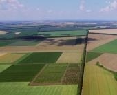 Сельское хозяйство не для слабых