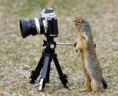 Как снять качественное видео на зеркальный фотоаппарат