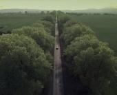 SoftServe Sense: рекламна кампанія від Vitamin