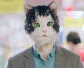 Котя, Костя и ноутбук