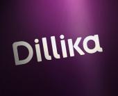 Дизайн упаковки Dillika