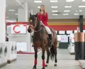 Смотрите, лошадь в Фокстроте
