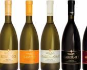 «Баядера» провела рестайлинг бутылок сухих вин «Коблево»