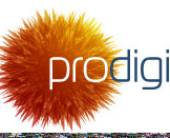 Prodigi —новый игрок наинтернет рынке
