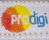 Prodigi показало фильм «Социальная сеть»